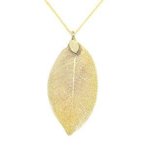 🎉LAST CHANCE 🎉 Necklace Leaf Gold